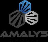 Amalys Groupe